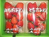栃木県産【とちおとめ】いちご2パック入り