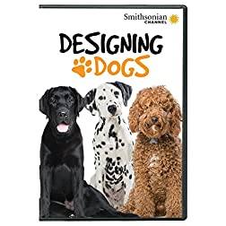 Smithsonian: Designing Dogs DVD