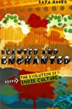 Slanted and Enchanted: The Evolution of Indie Culture