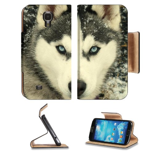 Animal Husky Dog Snow Wildlife Cute Cold Arctic Wolf Samsung Galaxy S4 Flip Cover Case With Card Holder Customized Made To Order Support Ready Premium Deluxe Pu Leather 5 Inch (140Mm) X 3 1/4 Inch (80Mm) X 9/16 Inch (14Mm) Luxlady S Iv S 4 Professional Ca