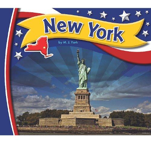 new-york-statebasics