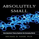 Absolutely Small: How Quantum Theory Explains Our Everyday World Hörbuch von Michael D. Fayer Gesprochen von: Scott Peterson