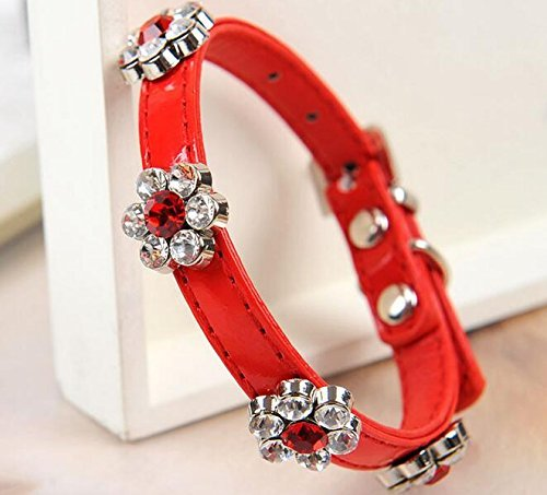 neonr-pet-collar-with-diamond-orichid-shape-fashionable-and-personalized-designed-for-teacup-dogs-ch