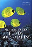 Merveilles des fonds sous-marins