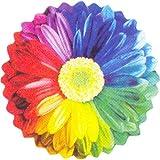 Gorgeous Rainbow Flower 26