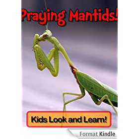 Praying Mantids! Learn About Praying Mantids and Enjoy Colorful Pictures - Look and Learn! (50+ Photos of Praying Mantids) (English Edition)