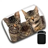 3 Cute Kittens All Closing Eyes We Are Family For Amazon Kindle Fire & Kindle 3G Keyboard Soft Protection Neoprene Case Cover Sleeve Bag With Pocket which is Ideal for Headphones, Data Cable etc