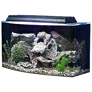 SeaClear Bowfront Aquarium Combo in Clear