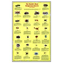 "American Educational JPT-0146 Dangerous Insects and Arachnids Poster, 26"" Length x 40"" Height"