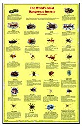 American Educational JPT-0146 Dangerous Insects and Arachnids Poster, 38x26\