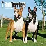 Bull Terriers 2015 Calendar