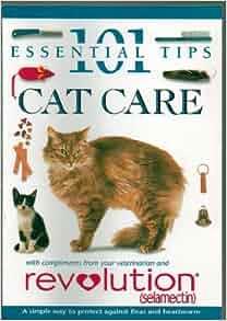 cat proof screening