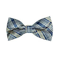 Galveston Brown Blue Check Bow Tie
