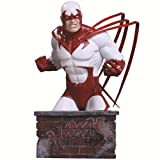 Hawk Heroes of the DC Universe DC Direct Bust