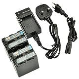 DSTE® 2pcs NP-QM91D Rechargeable Li-ion Battery + Charger DC01U for Sony NP-QM91D, NP-QM91, NP-QM90, CCD-TRV118, CCD-TRV128, CCD-TRV138, CCD-TRV228, CCD-TRV308, CCD-TRV318, CCD-TRV328, CCD-TRV338, DCR-DVD100, DCR-DVD101, DCR-DVD200, DCR-DVD201, DCR-DVD3