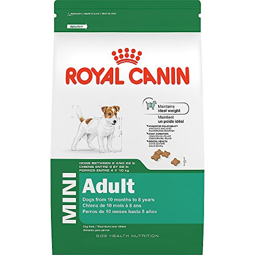 royal-canin-size-health-nutrition-mini-adult-dry-dog-food-14-pound