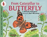 From Caterpillar To Butterfly (Turtleback School & Library Binding Edition) (Let's-Read-And-Find-Out Science: Stage 1 (Pb))