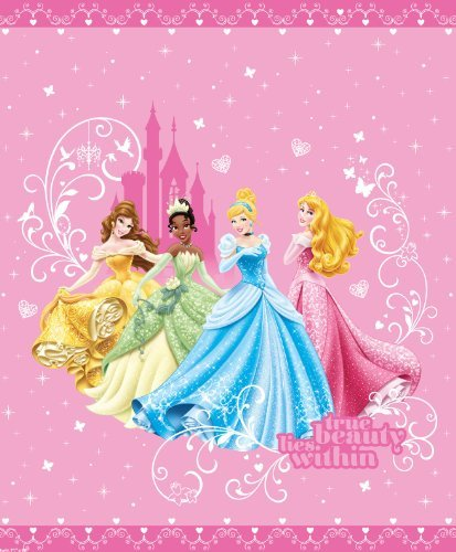 Lowest Price! Disney Princess Quilt in Full / Queen Size