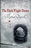 img - for The Dark Flight Down book / textbook / text book
