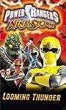 echange, troc Power Rangers Ninja Storm: Looming Thunder [VHS] [Import USA]