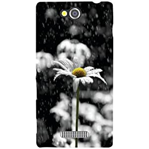 Sony Xperia C Back Cover - Droplets Designer Cases