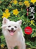 笑う犬[2013年 カレンダー]卓上・壁掛両用 ([カレンダー])