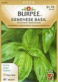 Burpee 53752 Herb Basil, Genovese Seed Packet