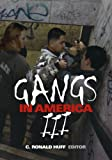 img - for Gangs in America III book / textbook / text book