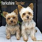 Yorkshire Terrier Calendar 2016 (Square)