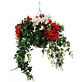Closer to Nature Artificial Red Poinsettia and White Cyclamen Hanging Basket