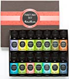 First Aid Essential Oil Set- 100% Pure Therapeutic Grade Oils- 14/ 10 ml of Lavender, Lemon, Peppermint, Tea Tree, Oregano, Frankincense, Ginger, Eucalyptus, Birch, Palmarosa, Wintergreen, Stress Relief, Breathe Easier and Four Thieves