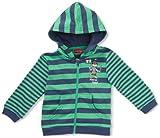 Salt & Pepper Baby - Jungen Kapuzensweatjacke, gestreift 3518127, Gr. 80, Grün (green)