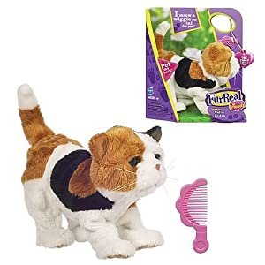 Amazon.com: Furreal Friends Newborn Calico Kitten Pet [Toy]: Toys
