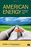 American Energy; The Politics of 21st Century Policy