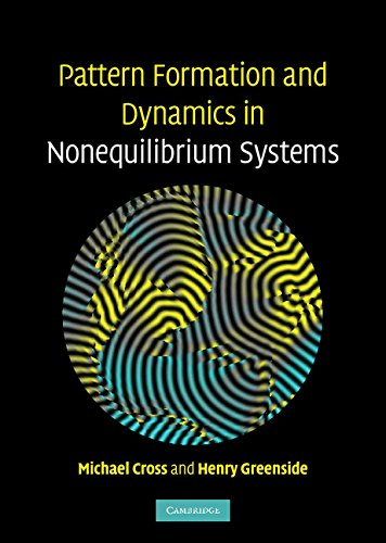 Pattern Formation and Dynamics in Nonequilibrium Systems Hardback