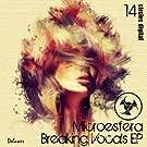 Breaking Vocals EP
