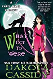 What Not To Were (Paris, Texas Romance Book 2)