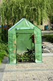 Petras High Quality Greenhouse W/shelves, Walk in Green House, Brand New
