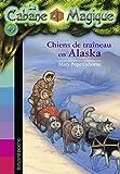 Chiens de traineau en Alaska