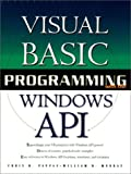 img - for Visual Basic Programming Windows API book / textbook / text book