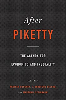 Book Cover: After Piketty: The Agenda for Economics and Inequality