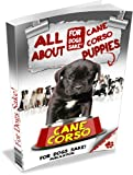 img - for All About Cane Corso Puppies book / textbook / text book