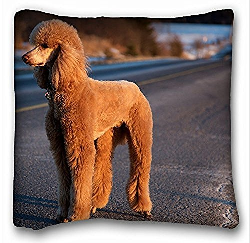 manta-cuadrada-decorativa-funda-de-almohada-de-animales-perro-caniche-s-road-trip-18-en-x-18-en-dos-