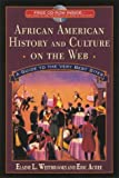 img - for African American History and Culture on the Web book / textbook / text book