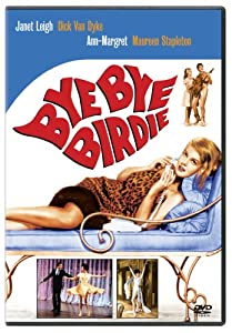 """Cover of """"Bye Bye Birdie"""""""