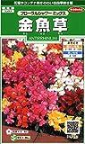 サカタのタネ 実咲花6251 金魚草 フローラルシャワーミックス 00906251