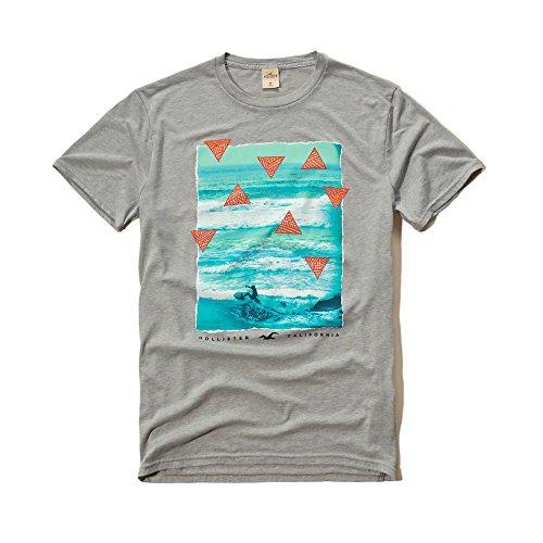 hollister-co-logo-graphic-tee-casual-printed-logo-mens-t-shirt-grey-medium