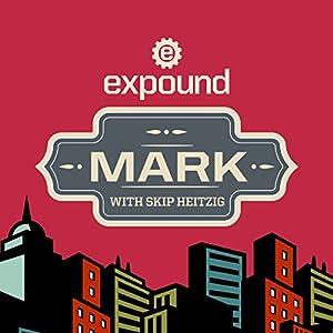 41 Mark - 2013 Audiobook