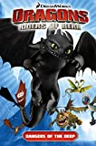 img - for Dragons: Riders of Berk - Volume 2: Dangers of the Deep (How to Train Your Dragon TV) book / textbook / text book