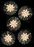Set Of 10 Flowers With Laser Silver Foil Christmas Lights